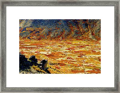 Lasal Mt. Kaleidoscope Framed Print