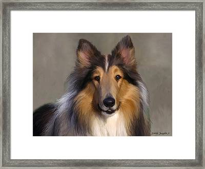 Lassie Come Home Framed Print by Snake Jagger
