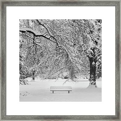 Last Break Framed Print by Philippe Sainte-Laudy Photography