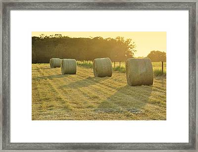 Last Glow Of The Day Framed Print by Jan Amiss Photography