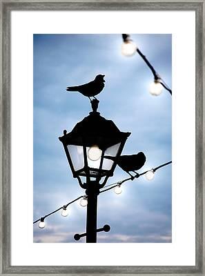 Last Light Framed Print by Martin  Fry
