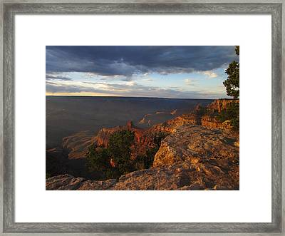 Last Rays At Grand Canyon Framed Print by Pasha Sourbeer