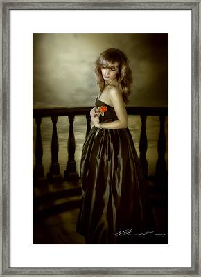 Last Red Rose Framed Print