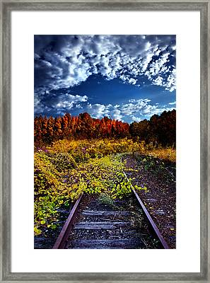 Last Stop Framed Print by Phil Koch