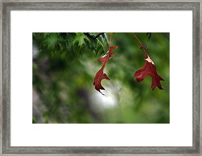 Framed Print featuring the photograph Last To Fall by Wanda Brandon