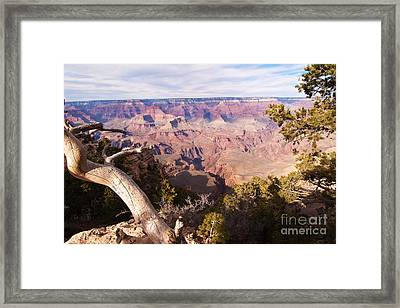 Late Afternoon At The South Rim Framed Print by Bob and Nancy Kendrick