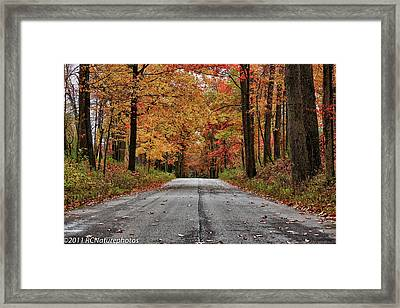 Framed Print featuring the photograph Late Autumn Embrace by Rachel Cohen