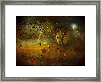 Late October Framed Print by Svetlana Sewell