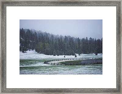 Late Season Snowstorm Framed Print by C Thomas Willard