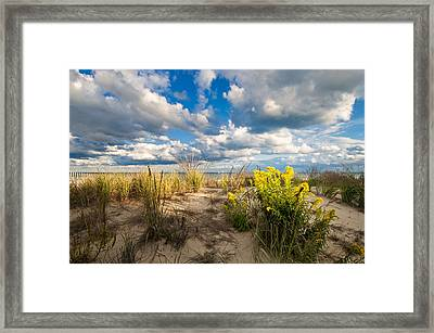 Framed Print featuring the photograph Late Summer Dunes Ocean City by Jim Moore