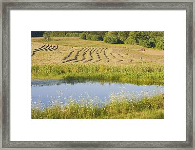 Late Summer Hay Being Harvested In Maine Canvas Poster Print Framed Print by Keith Webber Jr