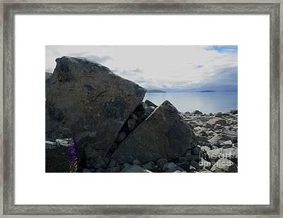 Framed Print featuring the photograph Laughing Rock On Lake Tekapo Foreshore.o by Nareeta Martin
