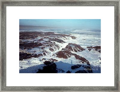 Framed Print featuring the photograph Lava Rock 90 Mile Beach by Mark Dodd