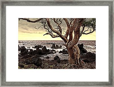 Lava Rocks And The Sea Framed Print