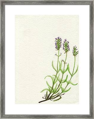 Framed Print featuring the painting Lavender by Annemeet Hasidi- van der Leij