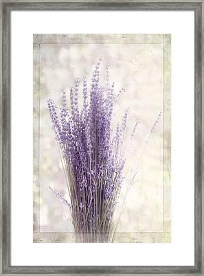 Lavender Bunch Framed Print