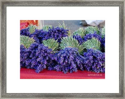 Lavender Bunches Framed Print by Andrea Simon