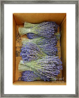 Framed Print featuring the photograph Lavender Bundles by Lainie Wrightson