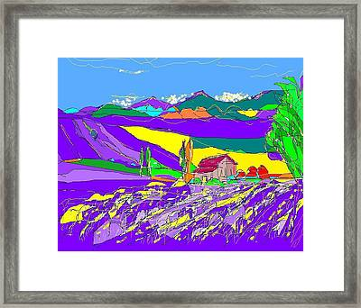 Lavender Fields Framed Print by Alberto Lacoius-Petruccelli