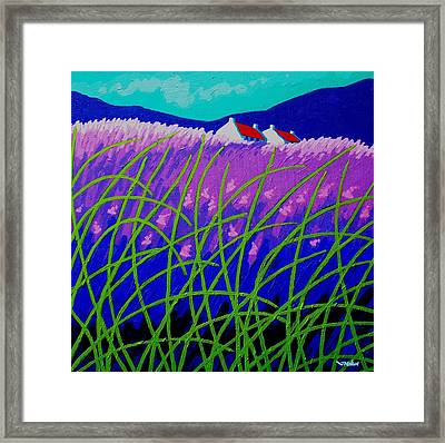 Lavender Hill Framed Print by John  Nolan