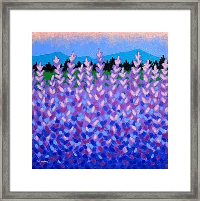 Lavender Vista  Framed Print by John  Nolan