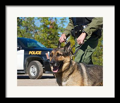 Drug Sniffing Dog Framed Prints