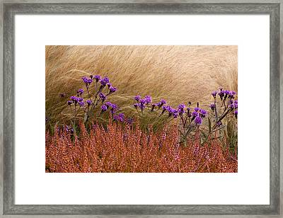 Layers Framed Print by Denice Breaux