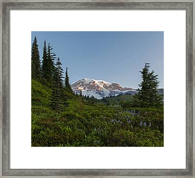Layers Of Beauty Framed Print by Mike Reid