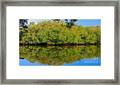 Lazy Reflections Framed Print