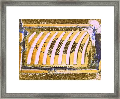 Leads To Fish Habitat Framed Print by Randall Weidner