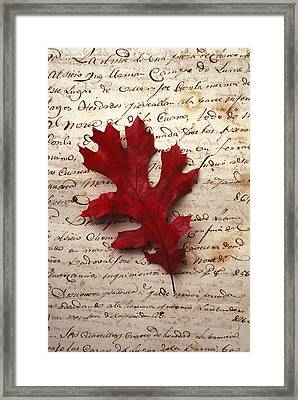 Leaf On Letter Framed Print by Garry Gay