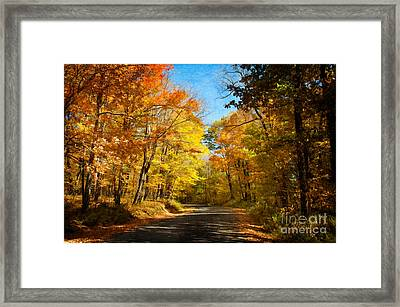 Leaf Peeping Framed Print by Lois Bryan