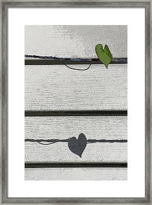 Framed Print featuring the digital art Leaf Shadow by Holly Ethan