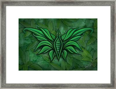 Leafy Bug Framed Print by David Kyte