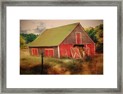 Lean To The Left Framed Print by Mary Timman