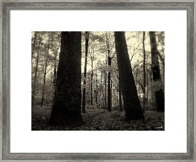 Lean Two Framed Print
