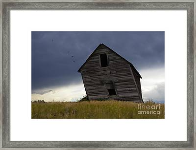 Leaning A Little 2 Framed Print by Bob Christopher