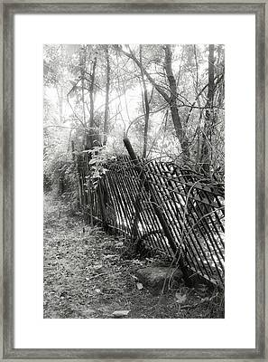 Framed Print featuring the photograph Leaning Fence by Mary Almond