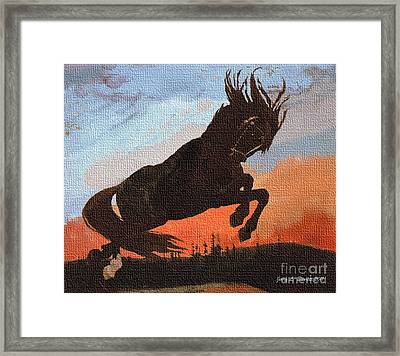 Leaping Black Horse Framed Print by Jerry L Barrett