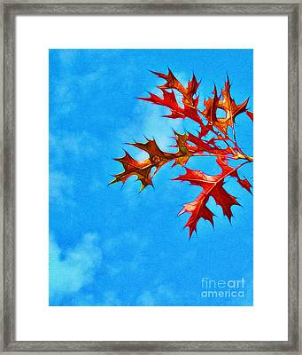 Leaves Against The Sky Framed Print by Judi Bagwell