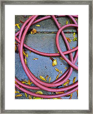 Leaves And Hose Framed Print by Bill Owen