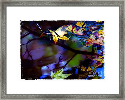 Leaves And Reflections Framed Print by Judi Bagwell