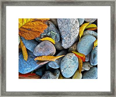 Framed Print featuring the photograph Leaves And Rocks by Bill Owen