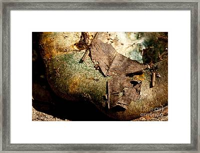 Leaves And Stuff Keep Falling On My Head Framed Print by Wilma  Birdwell