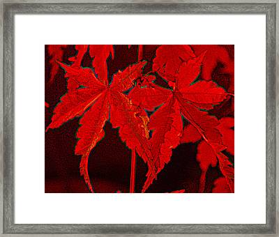 Leaves Of Red Framed Print
