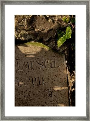 Leaves Of Stone And Green Framed Print
