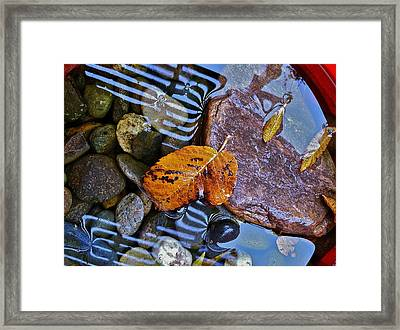 Framed Print featuring the photograph Leaves Rocks Shadows by Bill Owen