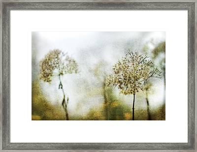 Leavings Framed Print