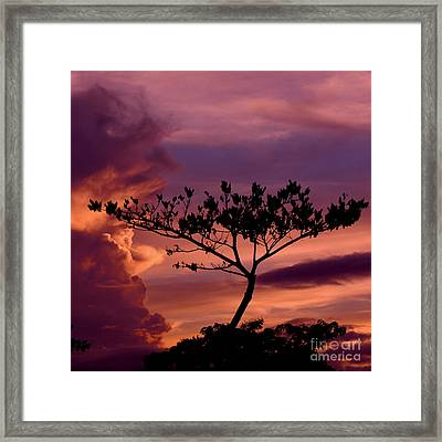 Leeward Oahu Framed Print
