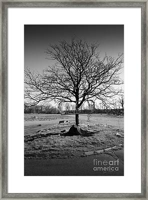 Left Behind Framed Print by Luke Moore